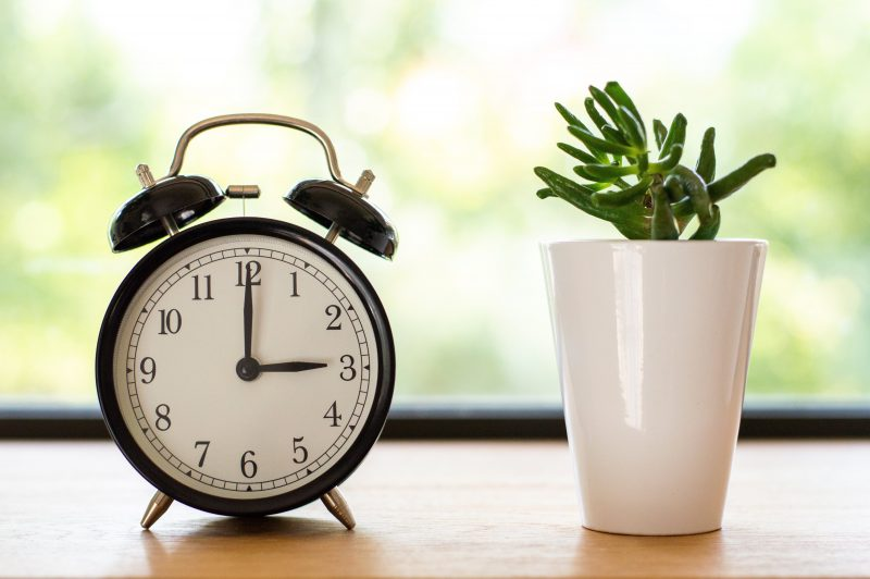 An old fashioned double-bell alarm clock sits on a table beside a small plant